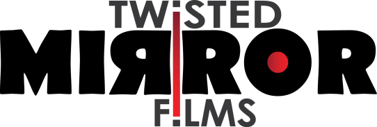 Dublin Web Festival is run by Twisted Mirror Films
