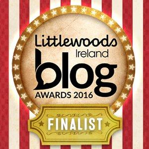Art and Culture Blog Finalist in Littlewoods Ireland Blog Awards